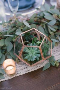 Air Plant Containers Luxury Copper Terrariums Filled with Succulents Air Plants and