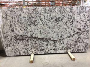 Artic Ice Granite Inspirational Daltile