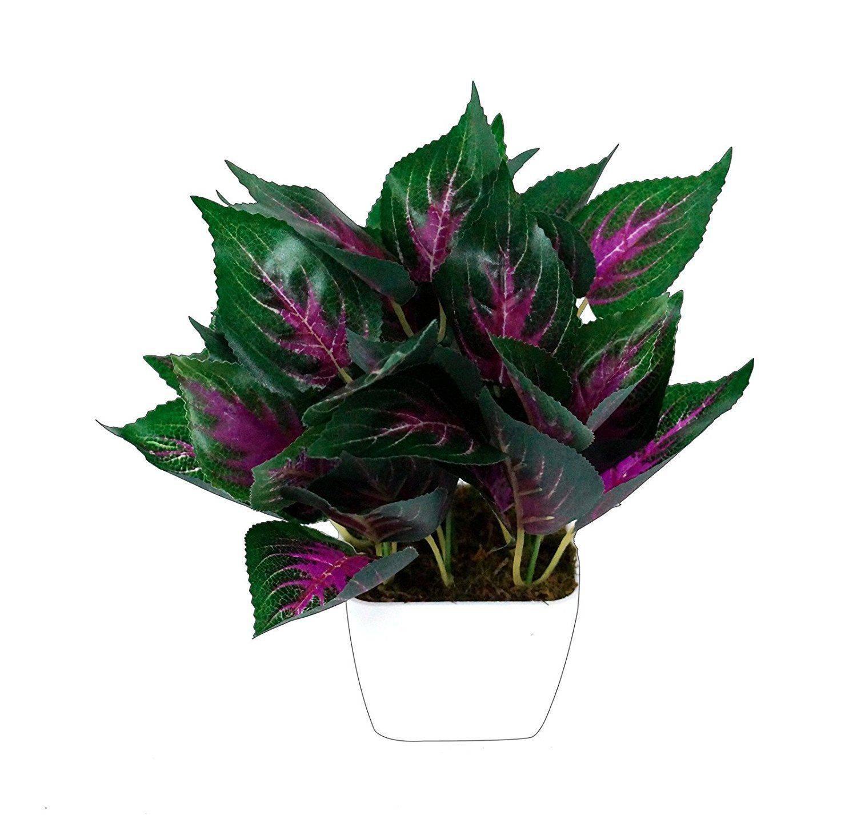 YUTIRITI Miniature Leaf With Square SDL 1 d1491