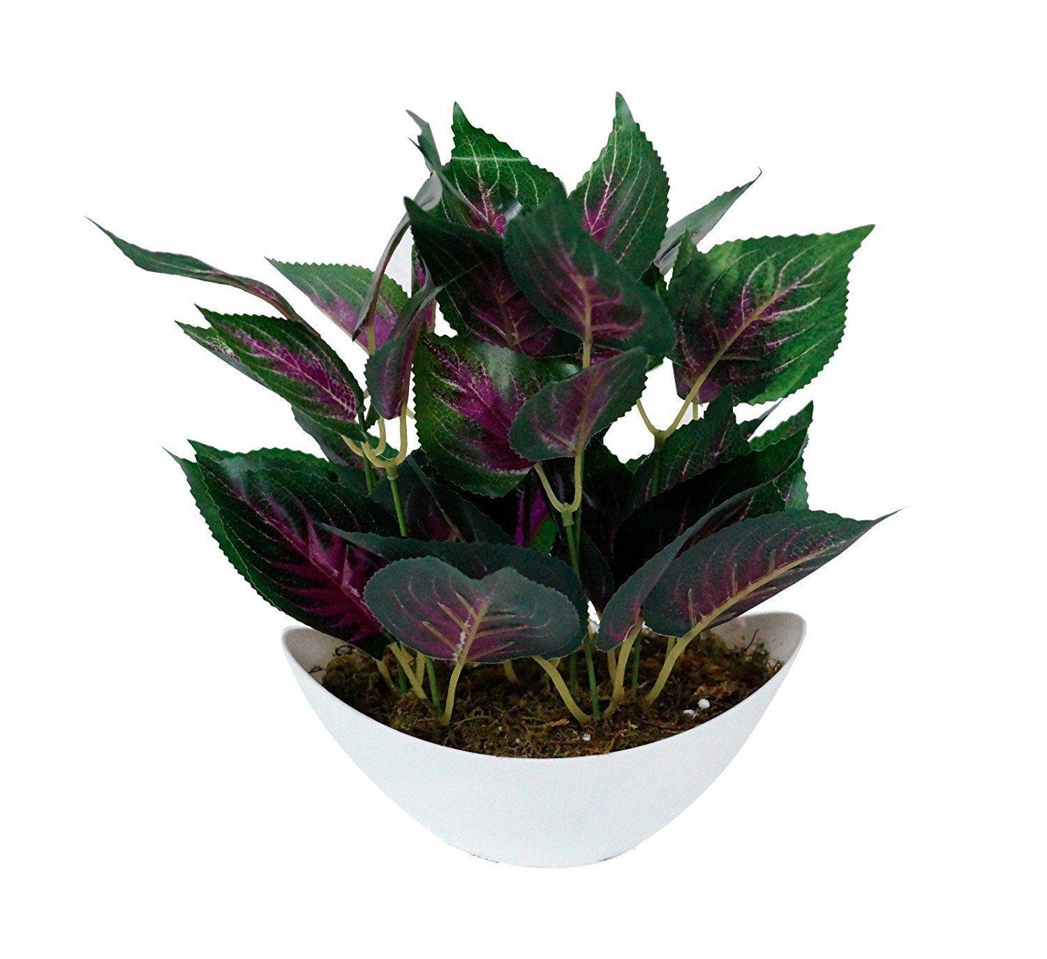YUTIRITI Miniature Leaf Indoor Plant SDL 1