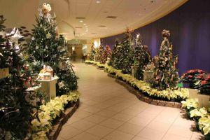 Avon Christmas Decorations Unique top Cleveland Christmas Activities