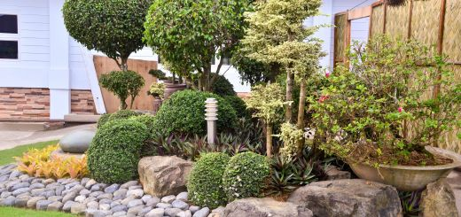 Backyard Landscaping Ideas with Rocks Best Of Landscape with Rocks