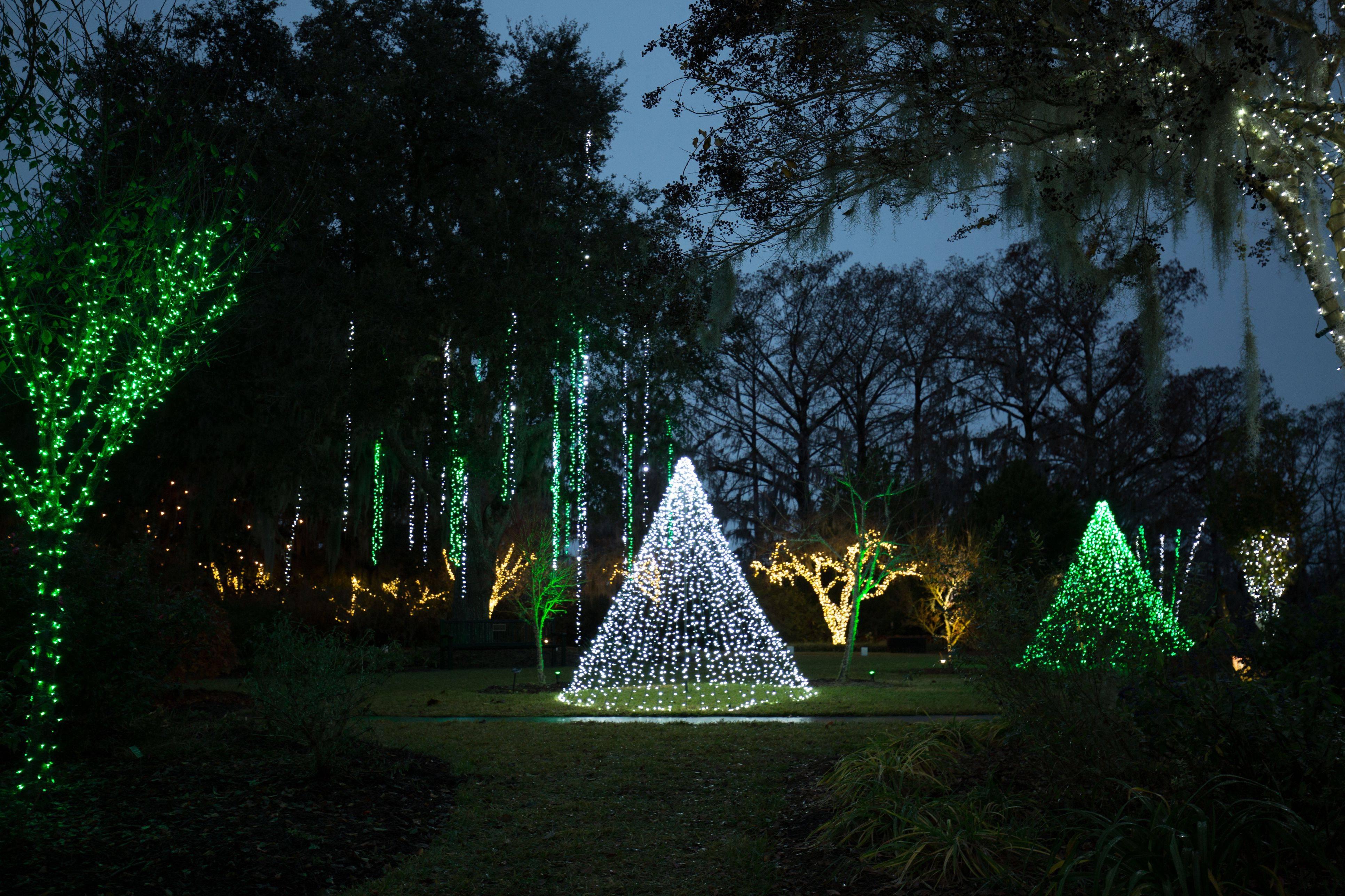 lights of the garden 5b22e836eb97de0036faa657