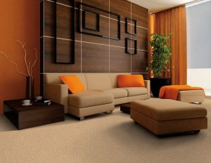 Color Combinations Interior Design Luxury Warm Color Wall Paint and Brown Shades sofa Design Ideas for