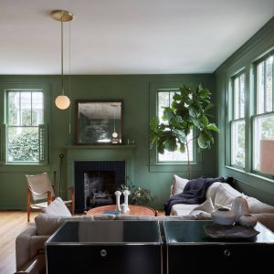 Colour Combinations Interior Design Awesome Colour Trend Leafy Greens Paint Colors In 2019