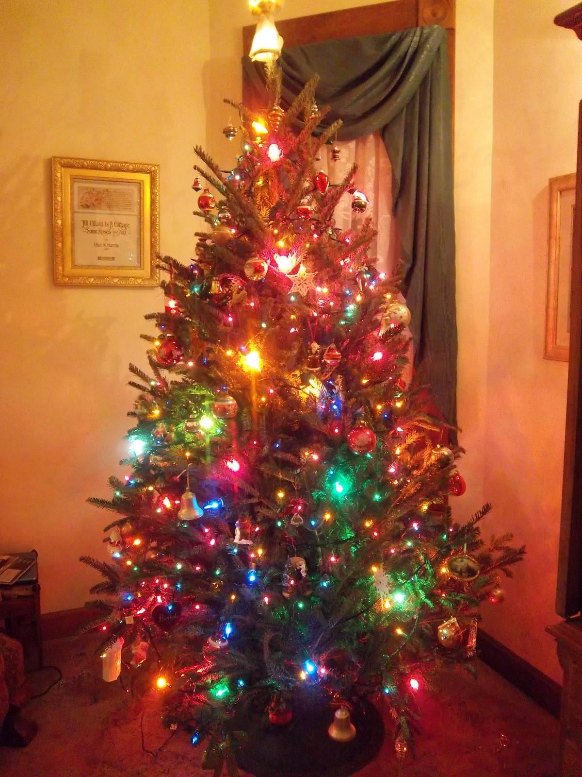 christmas tree 035 JPG
