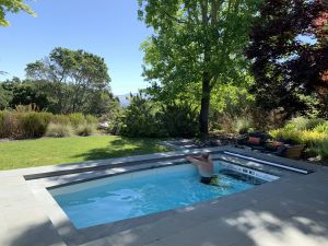 Elegant Swimming Pool Designs Elegant 10 Small Backyard Pools for A Dreamy Home Oasis Swimex