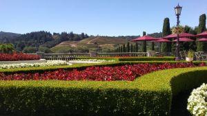 Garden Ridge Wedding Decorations Lovely Santa Rosa 2019 Best Of Santa Rosa Ca tourism Tripadvisor