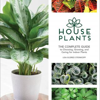 Indoor Plant Display Elegant Houseplants the Plete Guide to Choosing Growing and