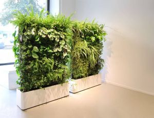 Indoor Plant Ideas Awesome Interior Plant Design Google Search