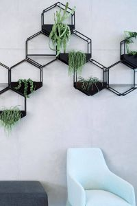 Indoor Wall Planters Inspirational Wabe Wall Planter Oblica Melbourne