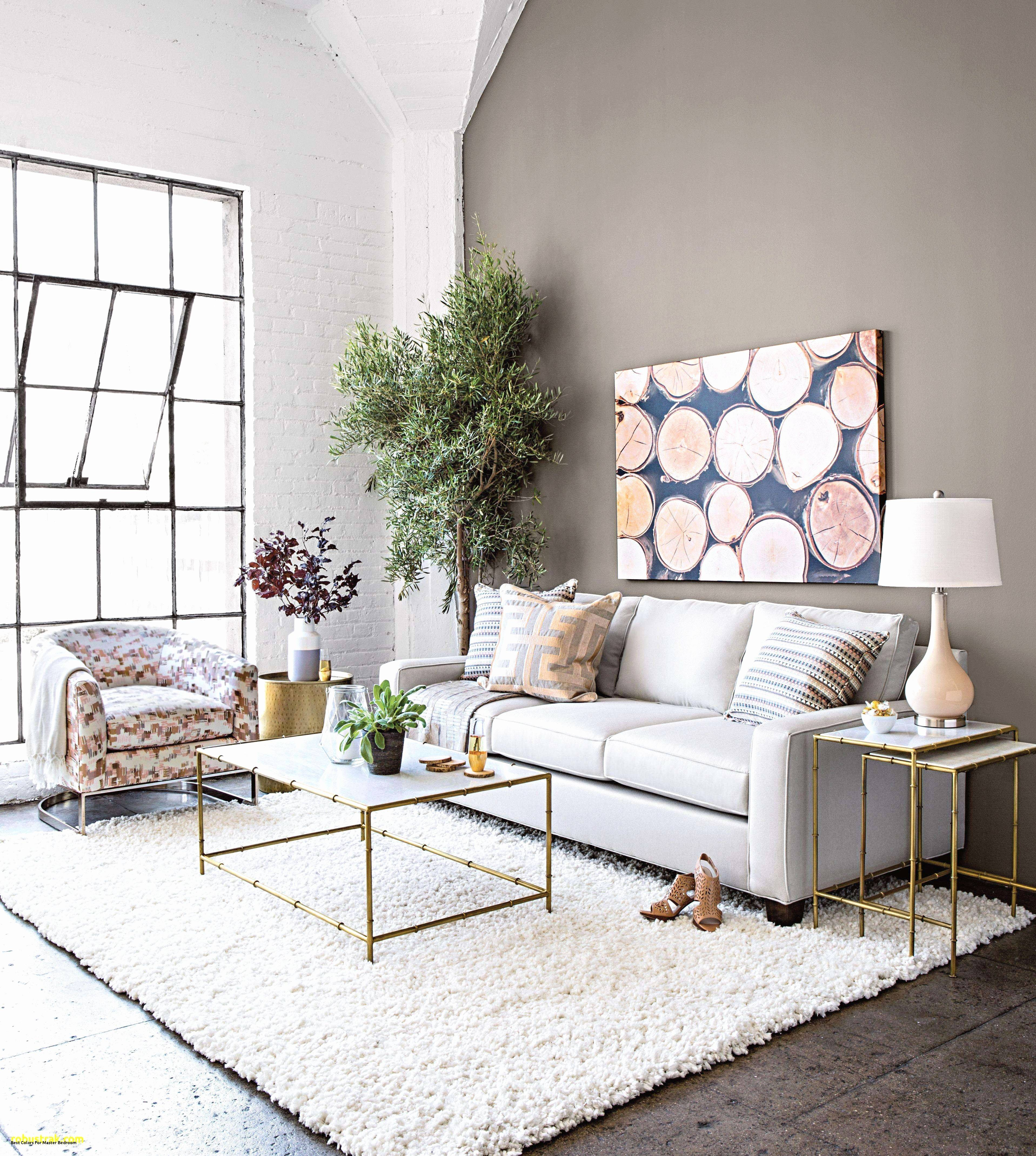 apartment decorating color schemes beautiful 48 elegant cozy living room decor ideas color schemes 2019 of apartment decorating color schemes