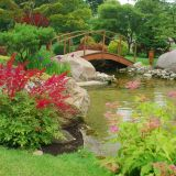 Japanese Garden theme Inspirational Japanese Gardens Ohio Google Search