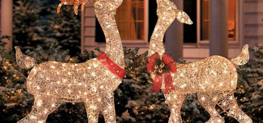 Moose Christmas Yard Decorations Unique 10 Most Inspiring Outdoor Decoration Ideas