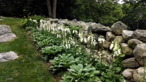 Pictures Of Rock Gardens Lovely Garden Designs Gardens & Turf Flowers & Shrubs