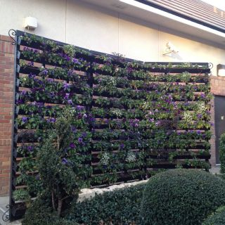 Rain Gutter Planters Awesome Rain Gutter Planter Wall Cool Idea to Create Functional