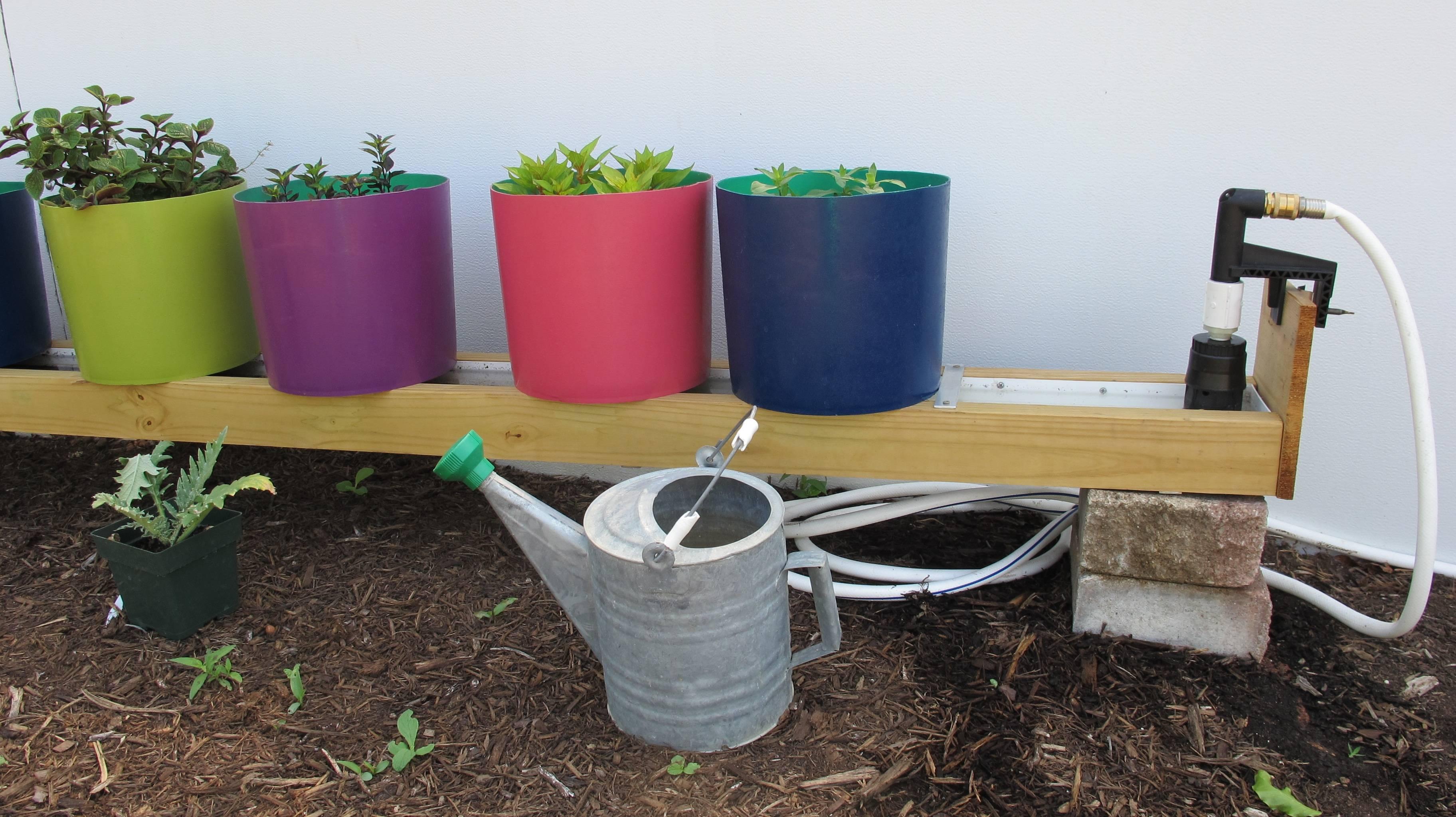 rain gutter or trough garden