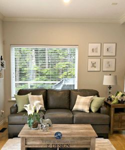 Rooms with Gray Walls and Brown Furniture Elegant An E Design with Edge B Gray the Best Greige Paint Colour