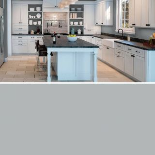 Sherwin Williams Silver Strand Kitchen Unique I Found This Color with Colorsnap Visualizer for iPhone by