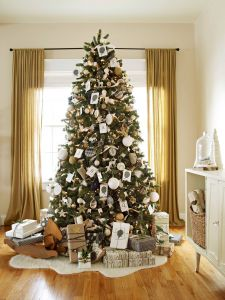 Small Decorated Christmas Trees Elegant Types Of Christmas Trees