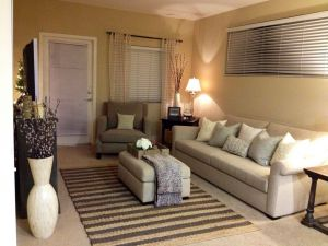 Small Living Room Layout Luxury Living Room Small Living Rooms Small Spaces Decorating