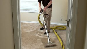 Stanley Steemer Gets Your Home Cleaner Awesome Helping Families with Allergies Designing Spaces