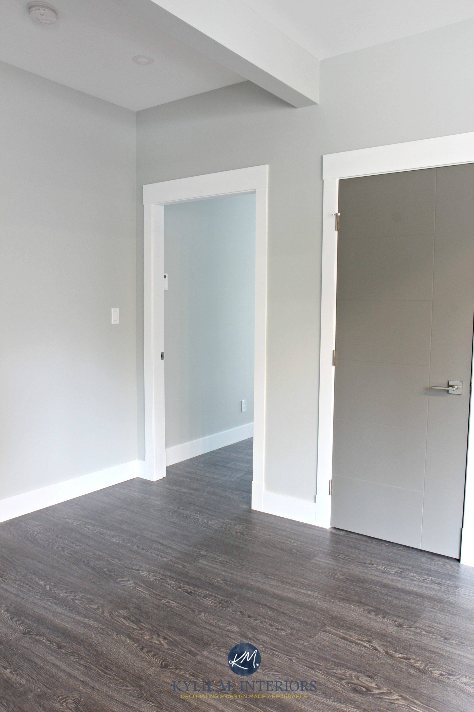 Benjamin Moore Stonington Gray hallway with white trim and Chelsea Gray painted door Kylie M Interiors Colour Consultant online Copy