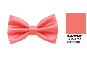 What Colors Go with Coral Fresh Living Coral Bow Tie for Men Elegant Ceremony Coral Wedding