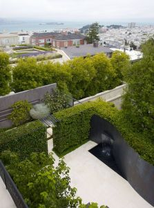 Mid Century Landscaping Awesome Pacific Heights Mystery A Hidden City Garden Reveals Its
