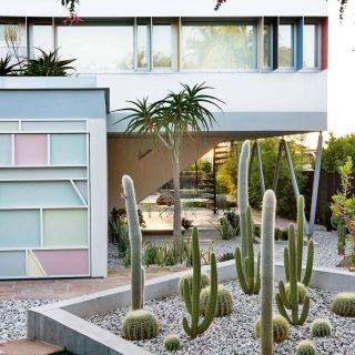 Mid Century Landscaping Inspirational Pin by Claudia Zhao On Palm Springs Garden Inspo