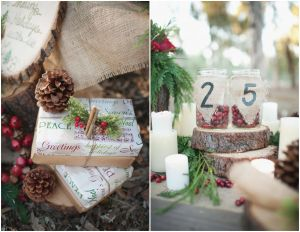 Best Of Rustic Party Decorating Ideas Inspirational Winter Rustic Wedding Ideas