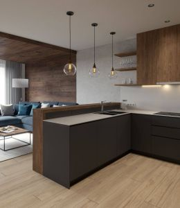 Exceptional Modern Apartment Living Room Best Of Modern Living Room On Behance