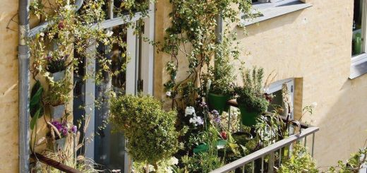 Fantastic Small Balcony Ideas Lovely We Have some Terrific Balcony Garden Design Ideas as Well as