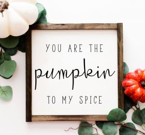 New Decorative Signs with Sayings Unique You are the Pumpkin to My Spice Wood Framed Printed Sign