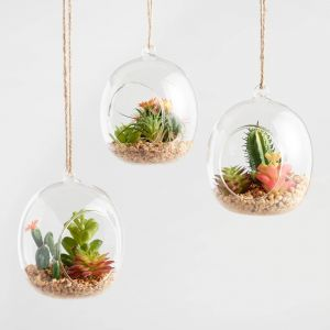 Remarkable Air Plant Wall Decor Unique Glass Globes with Faux Cacti and Jute Hangers Set Of 3 by