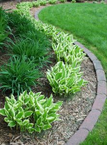Best Of Front Yard Fresh 20 Easy Landscaping Ideas for Your Front Yard