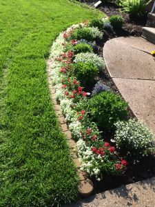 Flower Bed Design Unique My Fourth Of July Flower Bed