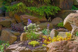 Rock Garden Ideas Beautiful 20 Awesome Modern Rock Garden and Flower Decoration Ideas
