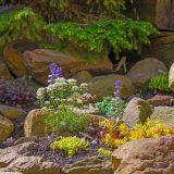 Best Of Rock Garden Best Of 20 Awesome Modern Rock Garden and Flower Decoration Ideas