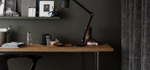 Remarkable Green Living Rooms Fresh Dark Office