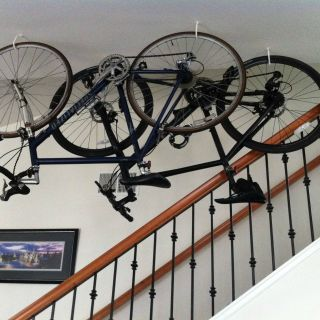 Unique 2 Bike Wall Storage Rack Beautiful Hanging Bikes From Ceiling Apartment Google Search