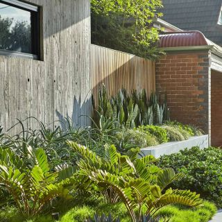 Fantastic Modern Landscaping Pictures Luxury Landscape Design Leichhardt — Adam Robinson Design with