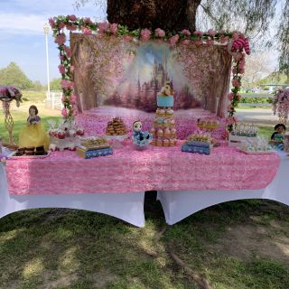 Disney Outdoor Decorations Luxury Disney Princess Inspired with Images