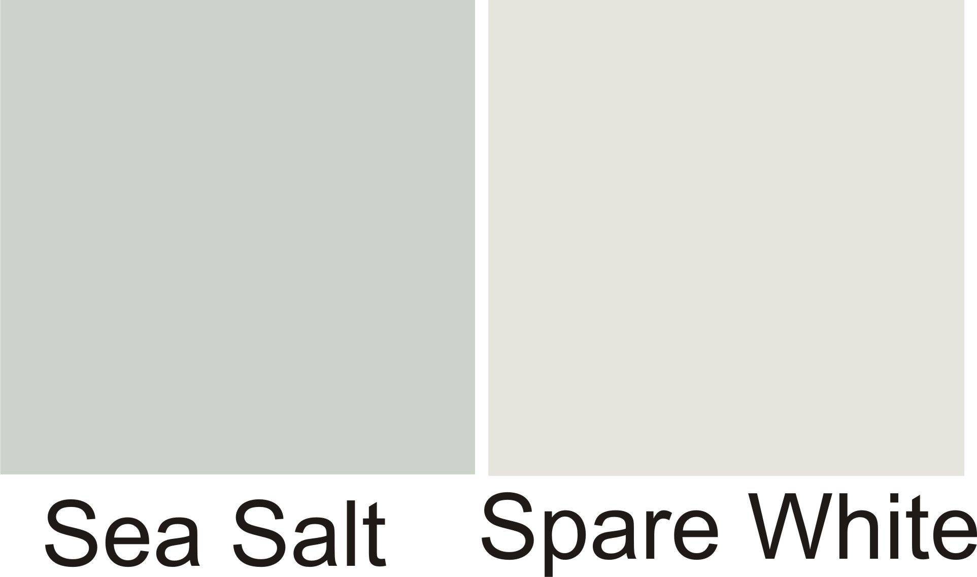 Sherwin Williams Sea Salt Coordinating Colors Awesome Spare White Sherwin Williams