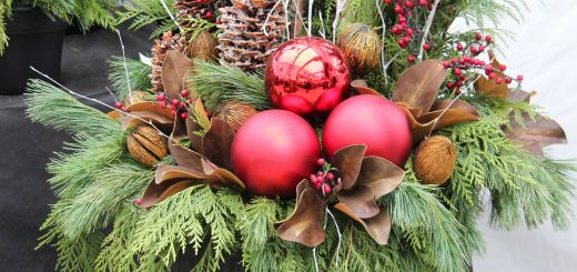 Pinterest Outdoor Christmas Decorations Luxury Outdoor Christmas Planter …